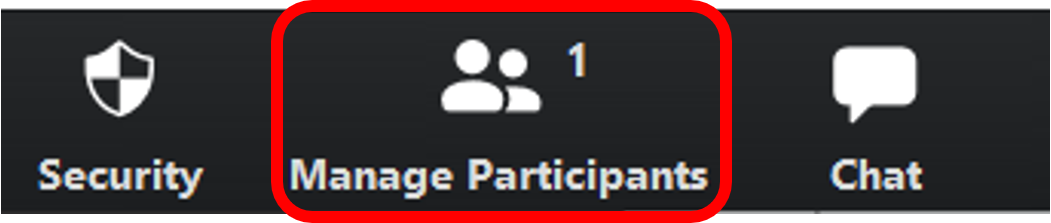 Manage Participants button, lower zoom toolbar to the right of the security button and to the left of the chat button.