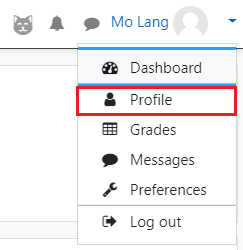 Select Profile