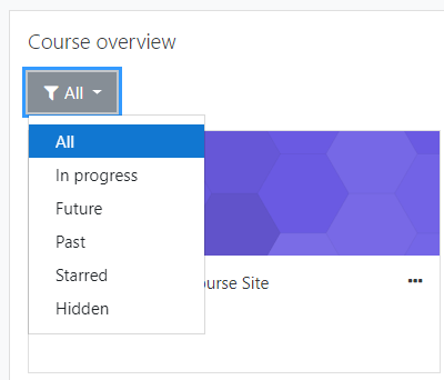 Course overview filter