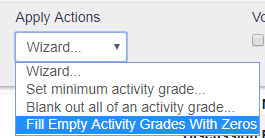 Fill Empty Activity Grades with Zeros